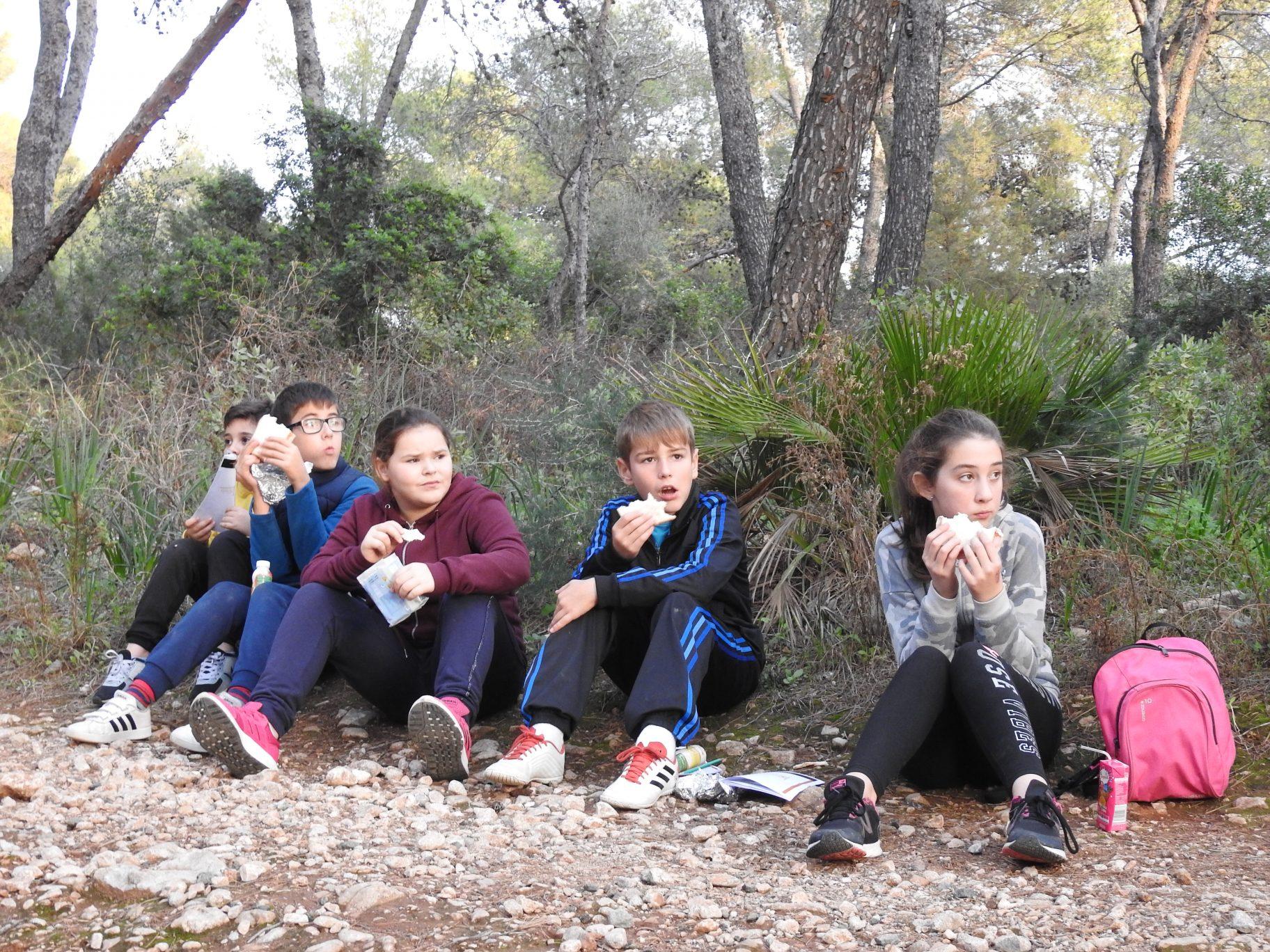 Paseo botánico por el Pinar de Nagüeles